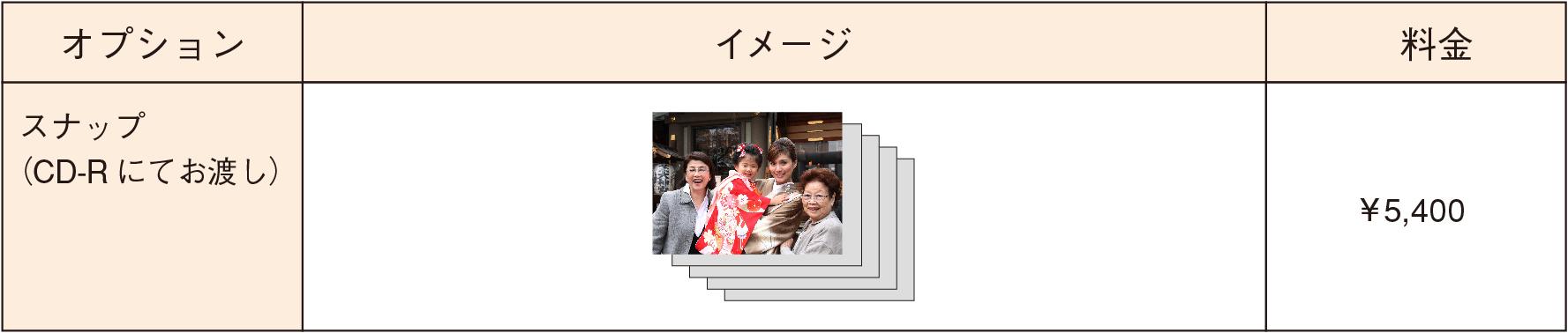 http://www.st-mg.co.jp/option_price.jpg